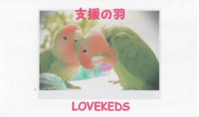 Lovek