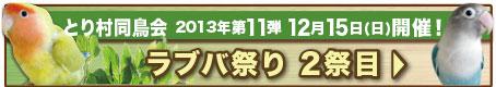Banner_131215samebird11